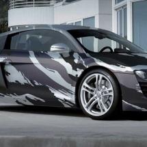 Tiger Stripe Audi