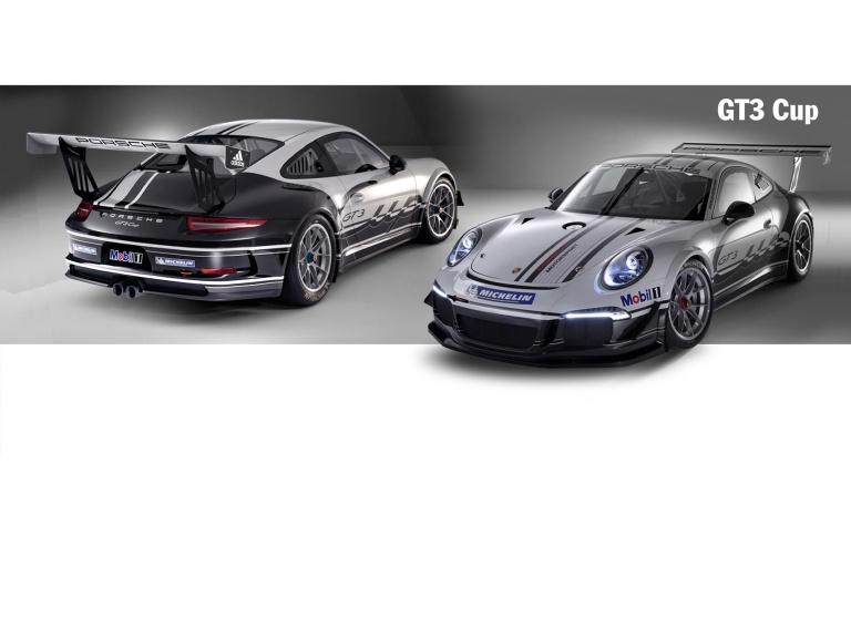 Decal Porsche GT3-Cup