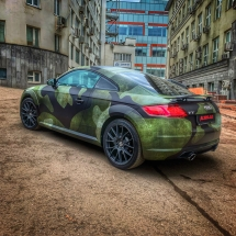 Audi TT Woodland 3-color Camo